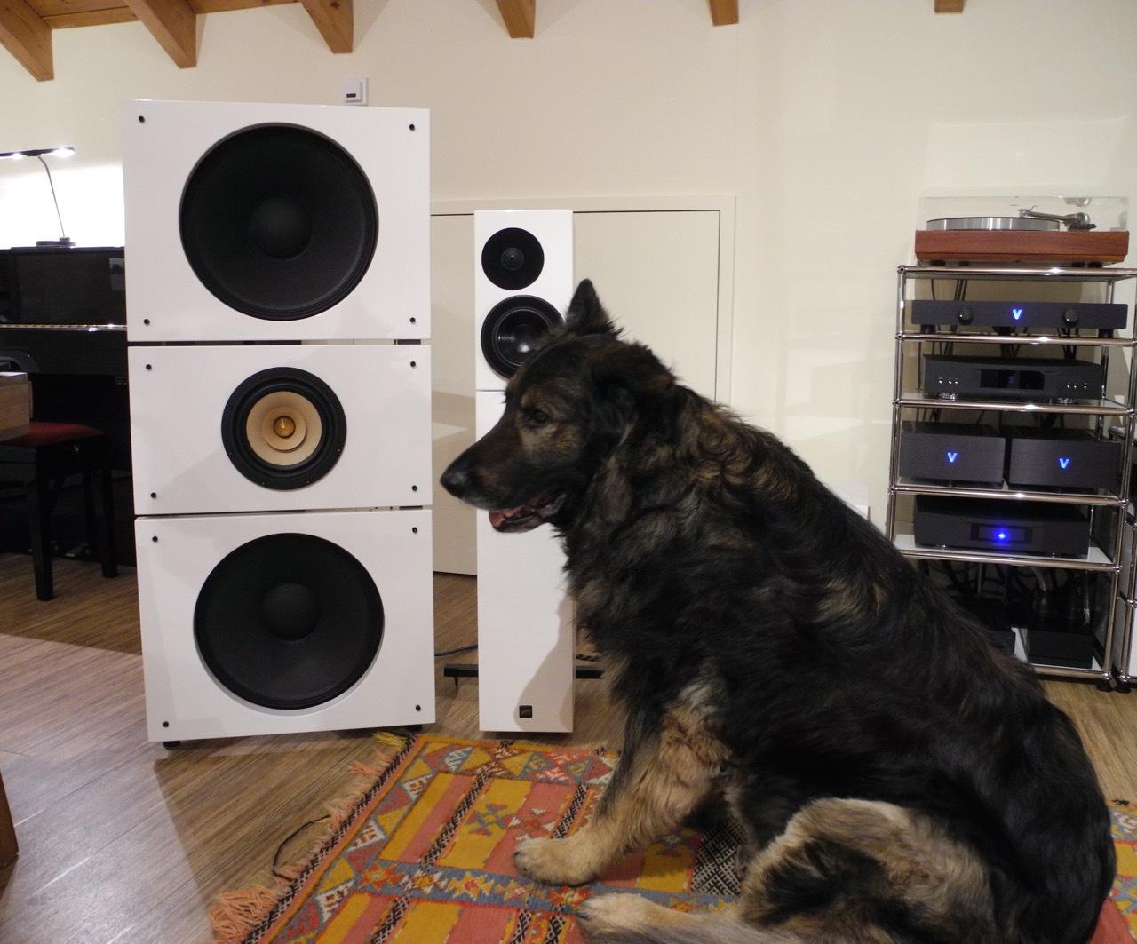 Pure Audio Project, Lautsprecher - HIFI-FORUM (Seite 2)