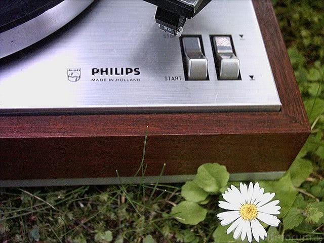 Philips 308 Schriftzug Philips
