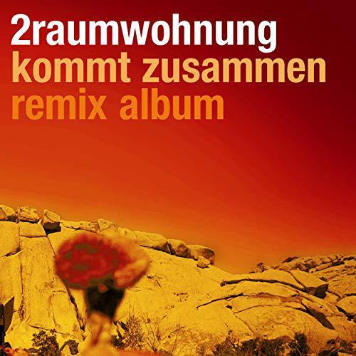 2raumwohnung Kommt Zusammen Remix