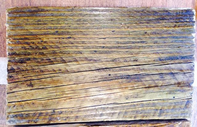 Holz behandelt 1