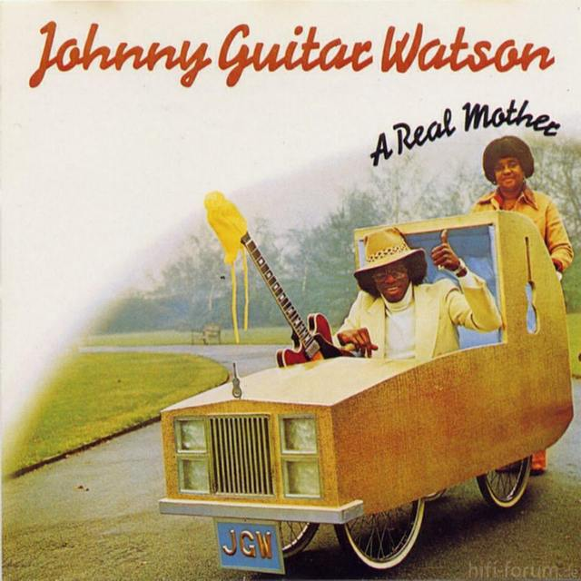Johnny Guitar Watson   A Real Mother