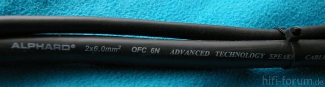 IMGP7568