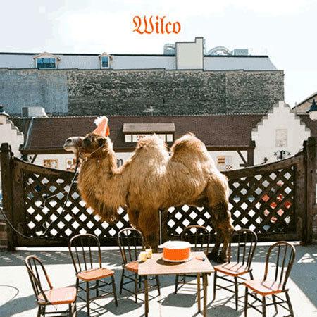 Wilco Album Lg