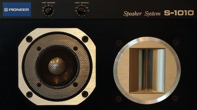 Pioneer S1010