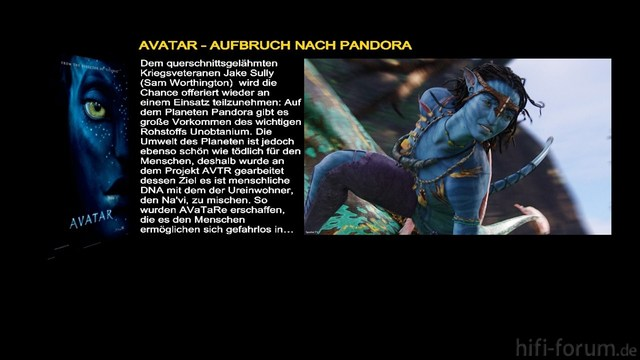 Avatar_curi