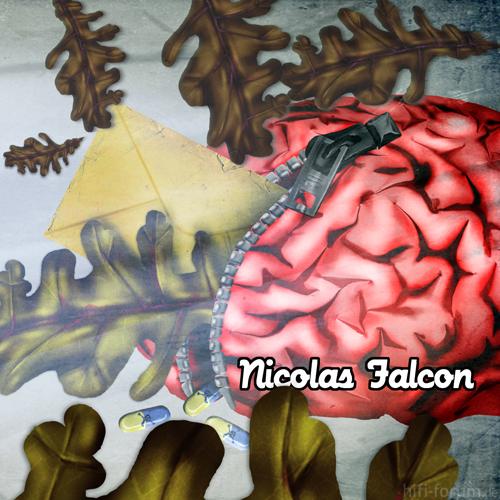 Nicolas Falcon Web
