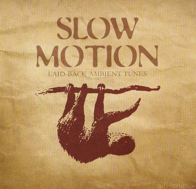 00 Va   Slow Motion 2008 (cover) Upe