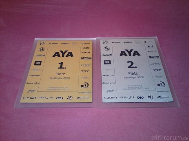 AYA_1