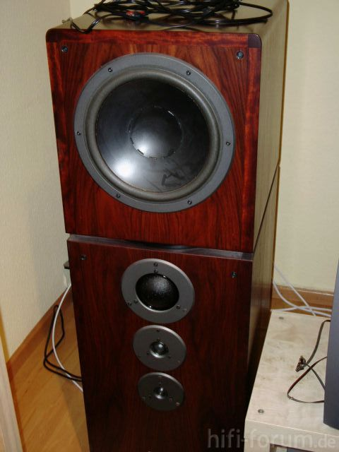 Dynaudio Compound P4