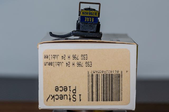 WT9A5665