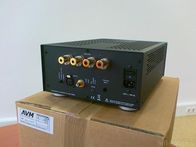 AVM 009