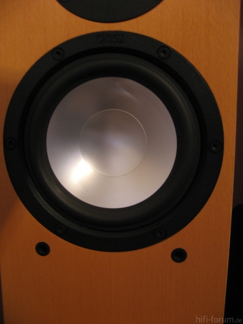 CantonKaratM80(3)