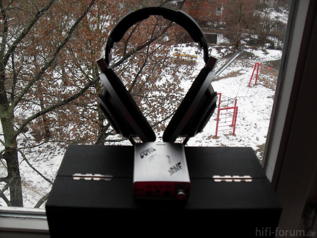 HD800(2)