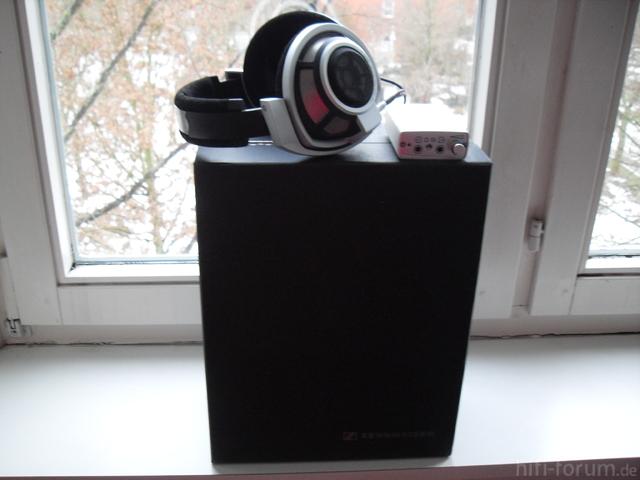 HD800(3)