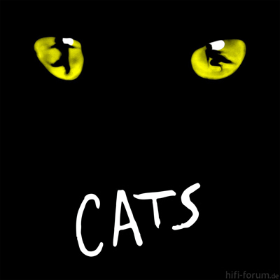Cats Musical 1981