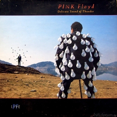 Pink Floyd - Delicate Sound of Thunder 1988