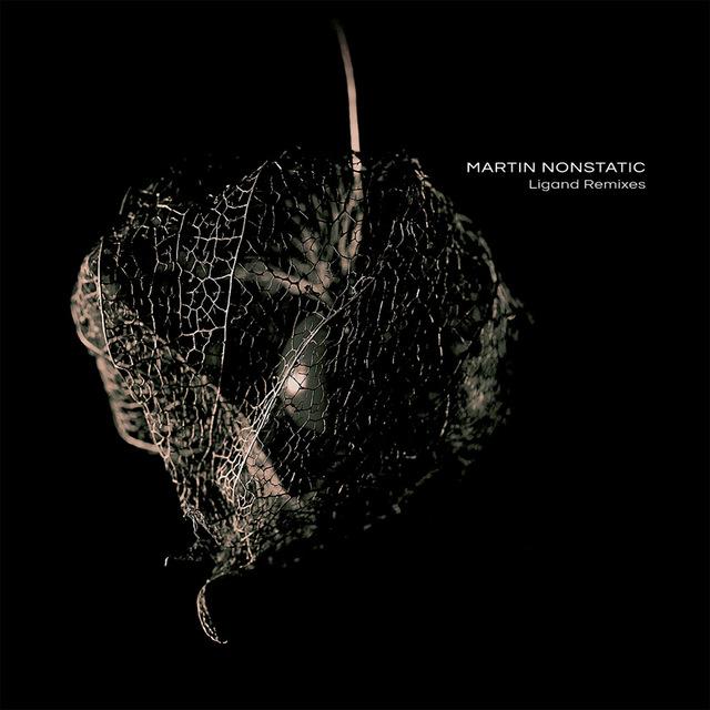 Martin Nonstatic - Ligand Remixes