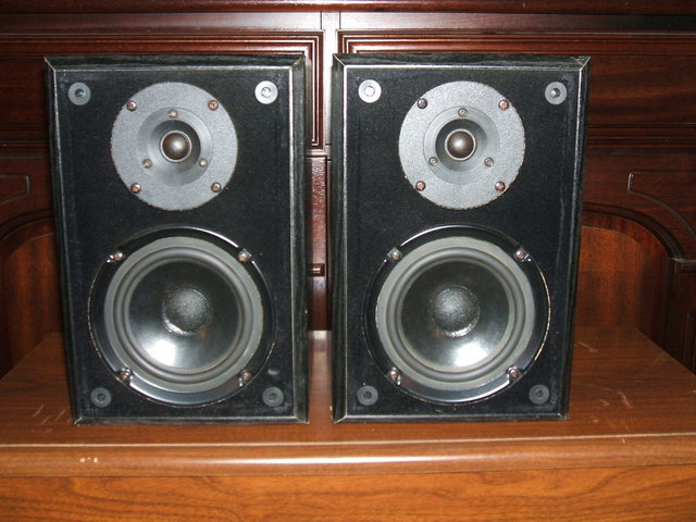 Bonsai Akustik Typ Box