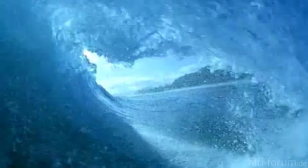 Bild5