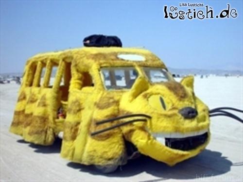 21601 Katzen Auto