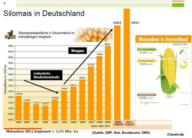 Biogasmais