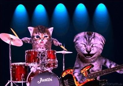 Katzen-Rock