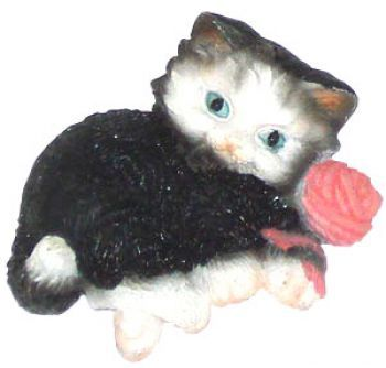 Katzenmagnet