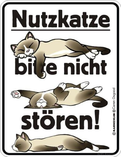 Nutzkatze