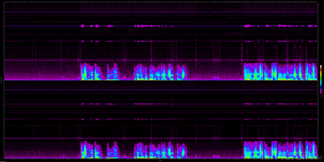 Erste Cinch-Messung; Roland UA-550 Quad-Capture; 192kHz, 24-Bit