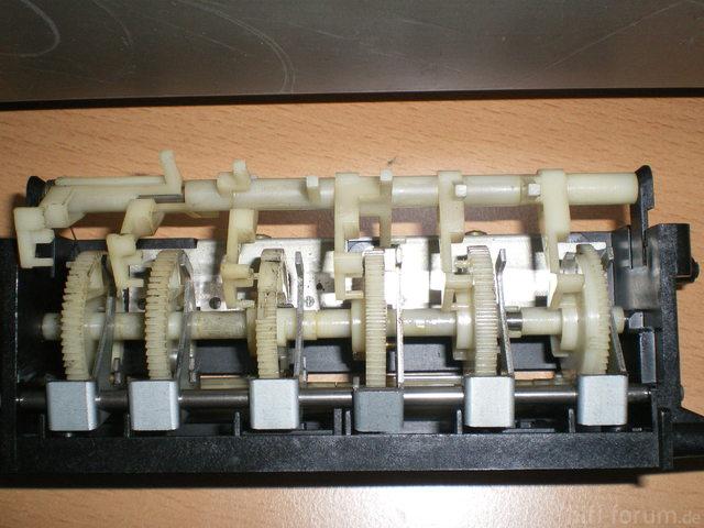 IMGP3546