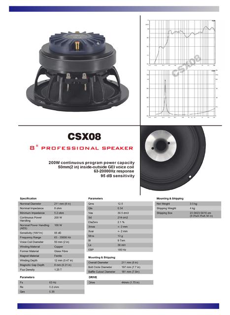 CSX08
