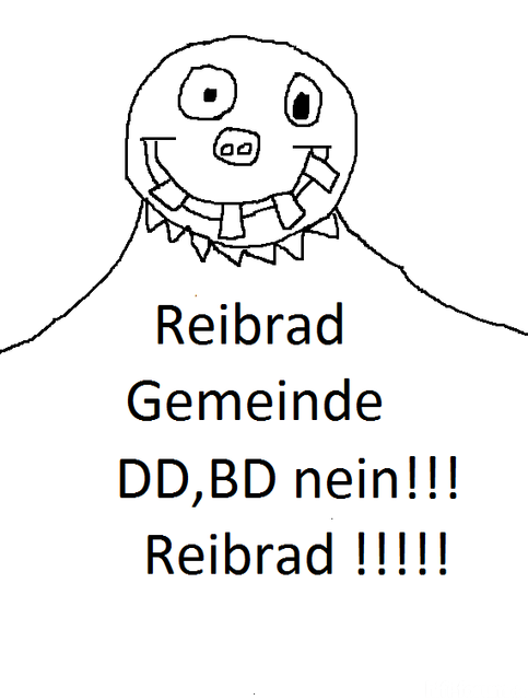 reibrad bild