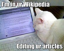 220px Wikipedia Lolcat