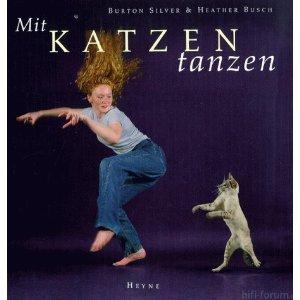 Katzen Tanzen