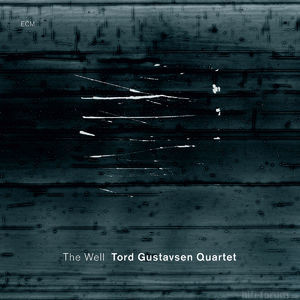 The Well  Gustavsen Tord Quartet