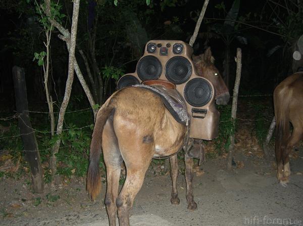 Tierisch Laut
