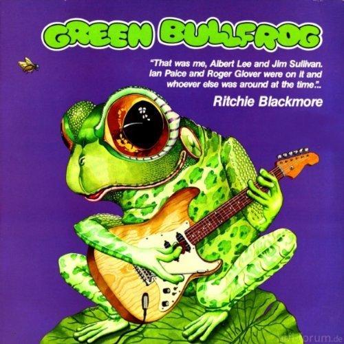 Green Bullfrog Gr