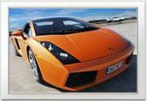 Lamborghini-das-tier
