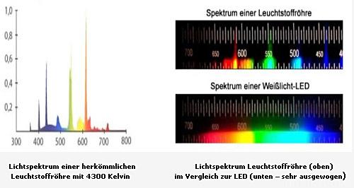 LED-vs.-Leuchtstoffröhre