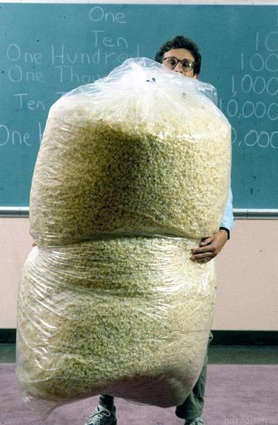 Popcorn-viel