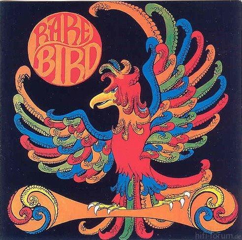 Rare Bird Rare Bird