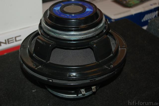 DSC 8531