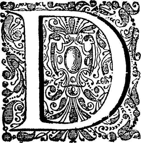 00130000 Decorative Initial D Q75 494x500