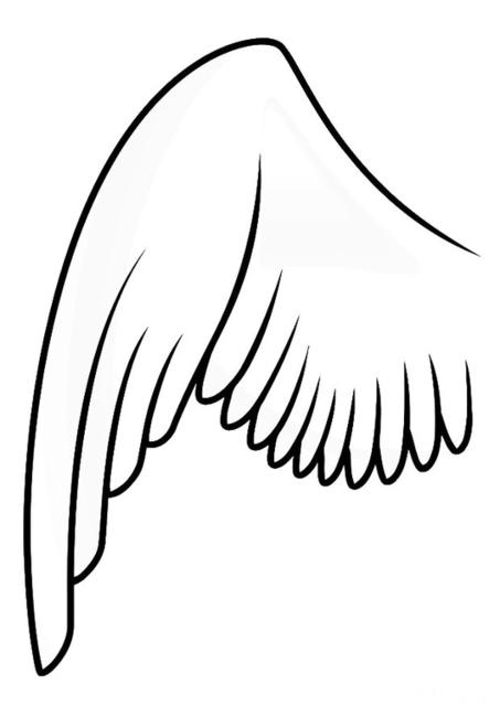 Malvorlage Linker Fluegel Dm20687