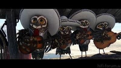 Rango+Owls
