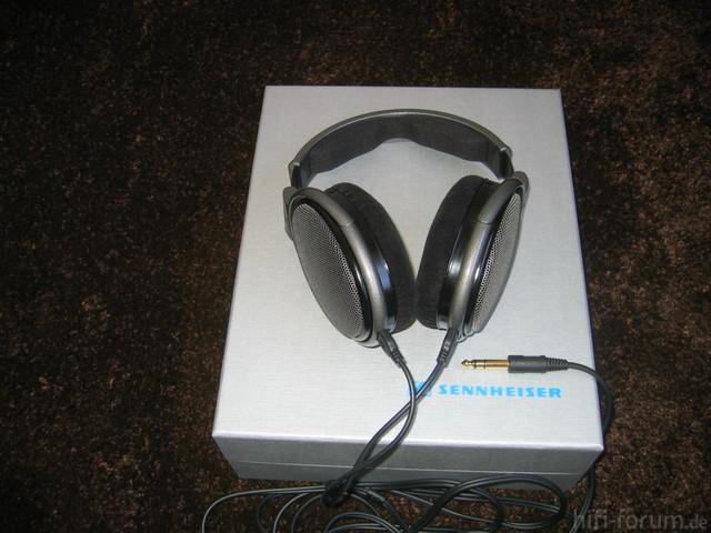 HD 650 (11)