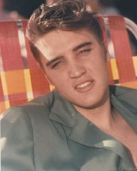 Elvis 1954 Launches Career