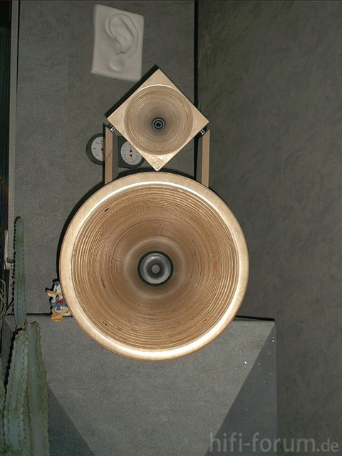 Eckhorn Mit Kugelwellenhorn