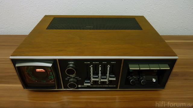 P1060313