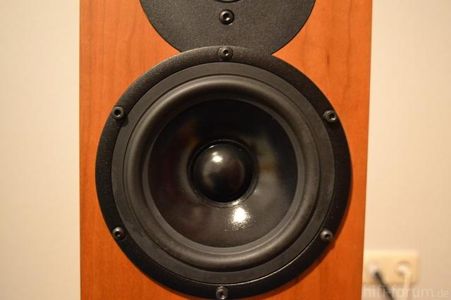 Bass Kudos X2